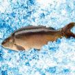 Doskonałe ryby na Wigilię w Lidlu